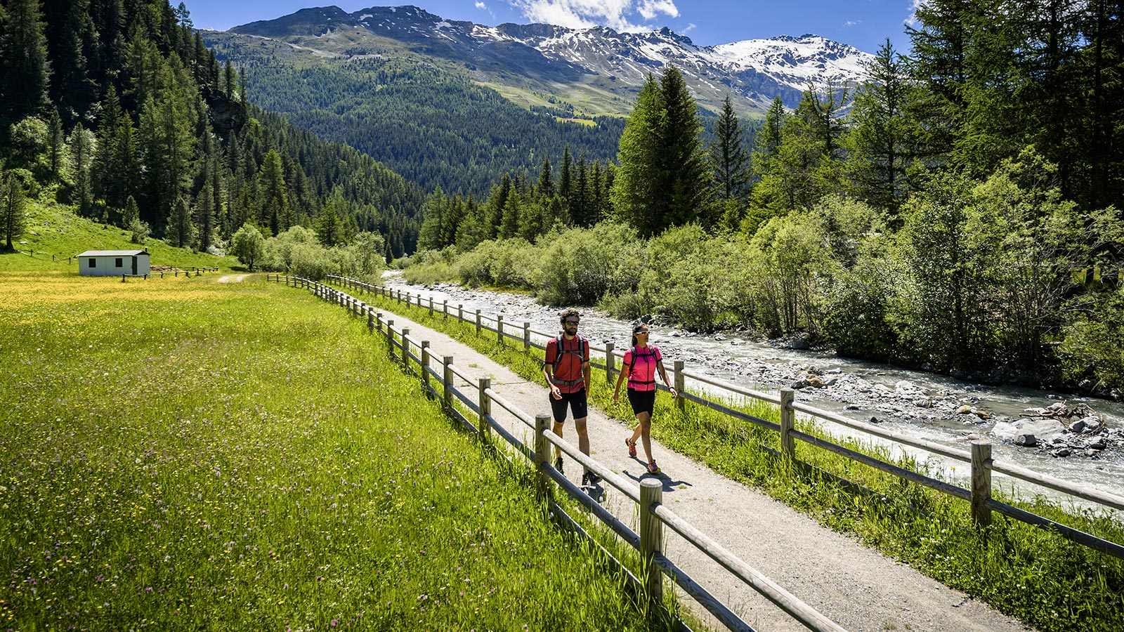 Two runners during the summer period enjoy a walk on the Stelvio National Park